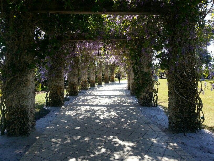 Naples Botanical Gardens Botanical gardens, Botanical