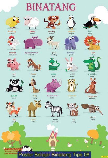 Binatang Kartu Flash Poster