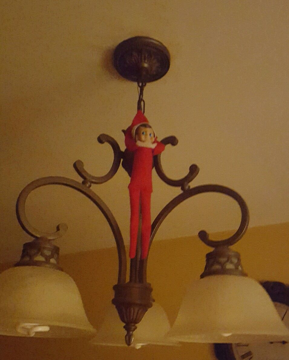 Elf On The Shelf Hanging From Chandelier Lac 2017