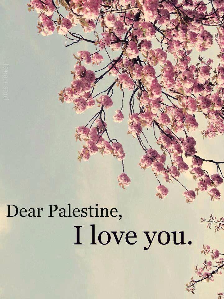 Free Palestine   Sprüche   Citat