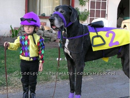 Coolest Jockey And Horse Costume Off To The Races Best Dog