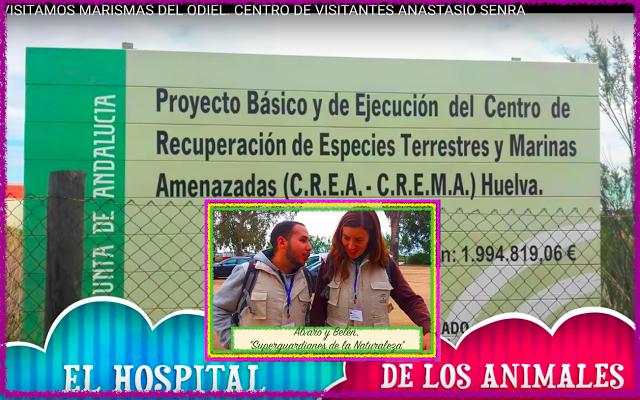 INFANTIL de GRACIA: VISITAMOS EL PARQUE NATURAL MARISMAS DEL ODIEL.ALL...