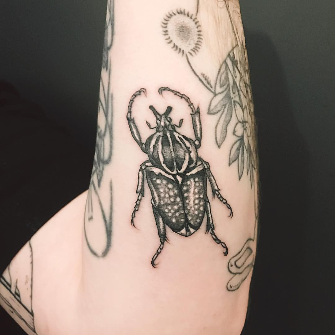 goliath beetle ritavonlehe tygerwolftattoo Skull