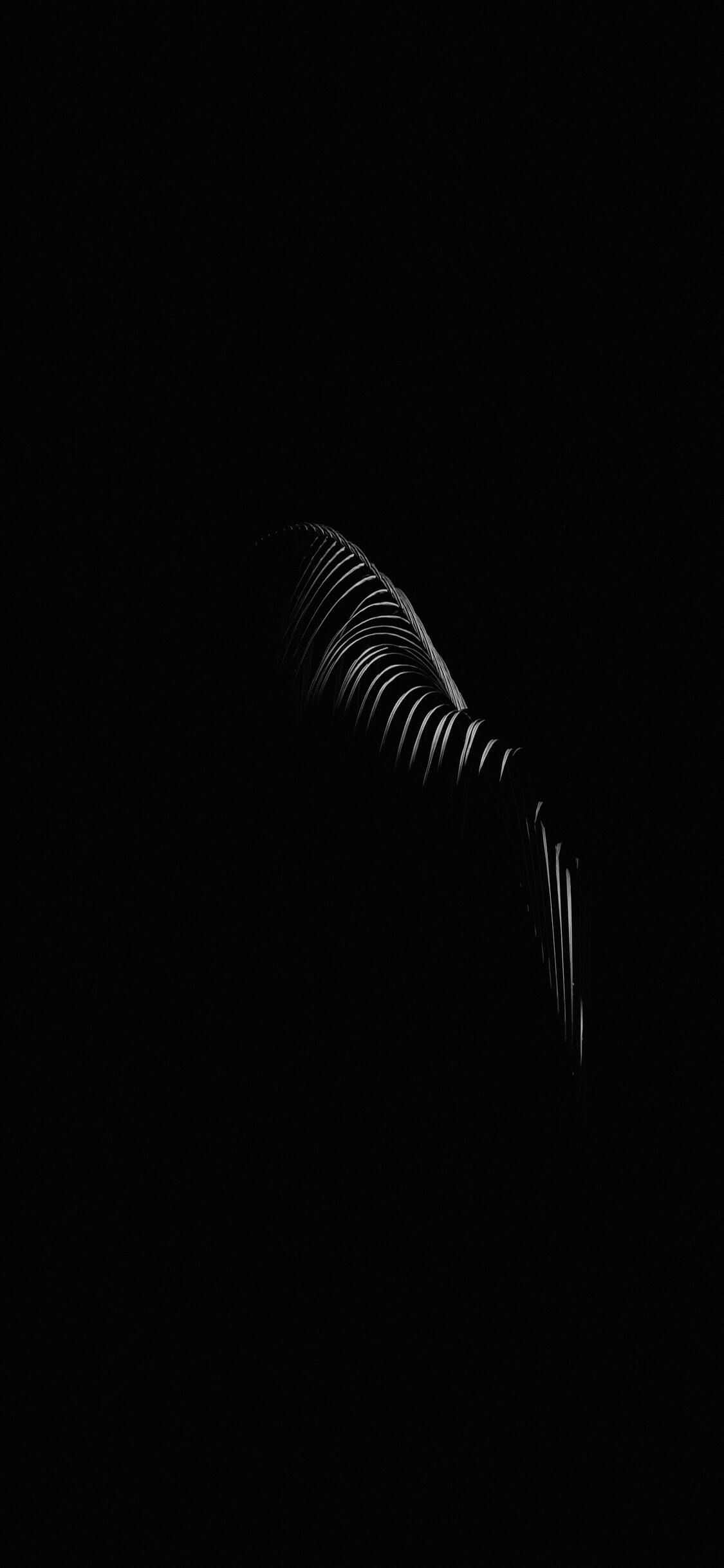 Black Wallpaper Hd For Iphone Android Wallpaper Black Black Wallpaper Black Wallpaper Iphone