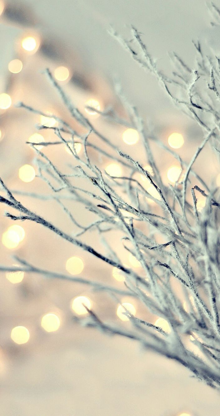 Pin by Kimy on Fondos✌ | Pinterest | Wallpaper, Phone and Winter