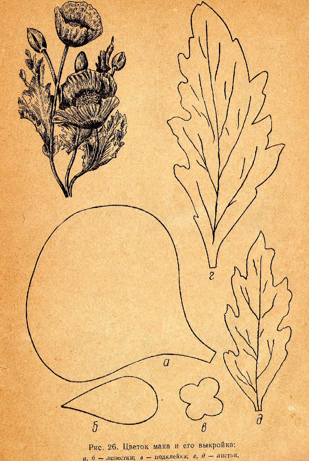 Мак цветы выкройка