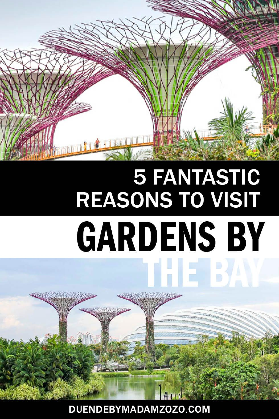 83c5837202ed80dc9f01588850cca77c - Fun Facts About Gardens By The Bay