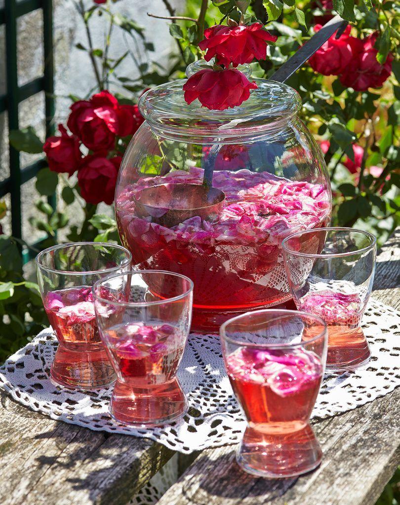 Herrlich erfrischend und zudem romantisch: Eine Sommerbowle mit Roséwein, Sekt, Rosensirup, Erdbeeren und duftenden Rosenköpfen.
