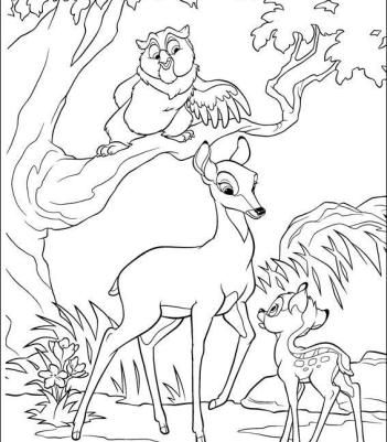Advised A Naughty Bambi Coloring Pages Owl Coloring Pages Animal Coloring Pages Disney Coloring Pages