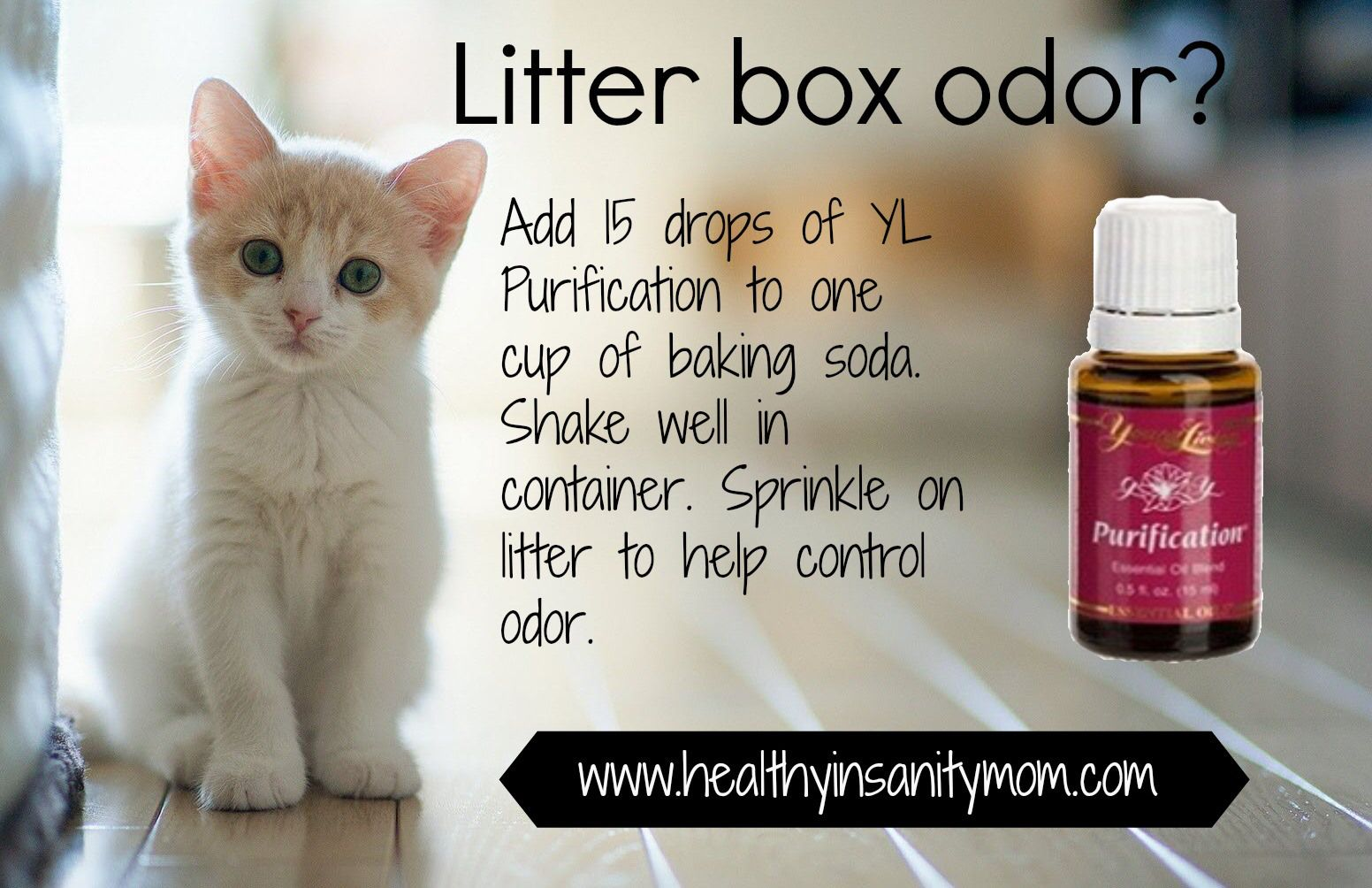 Essential oils to help with litter box smells or carpet