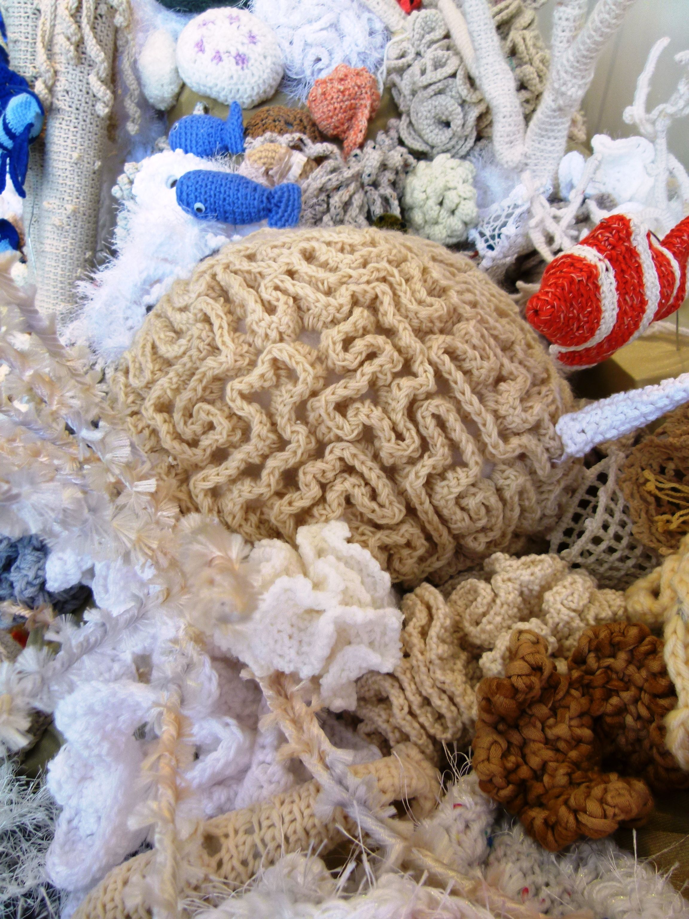 Hyperbolic Crochet Coral Reef Project St Petersburg Fl Summer