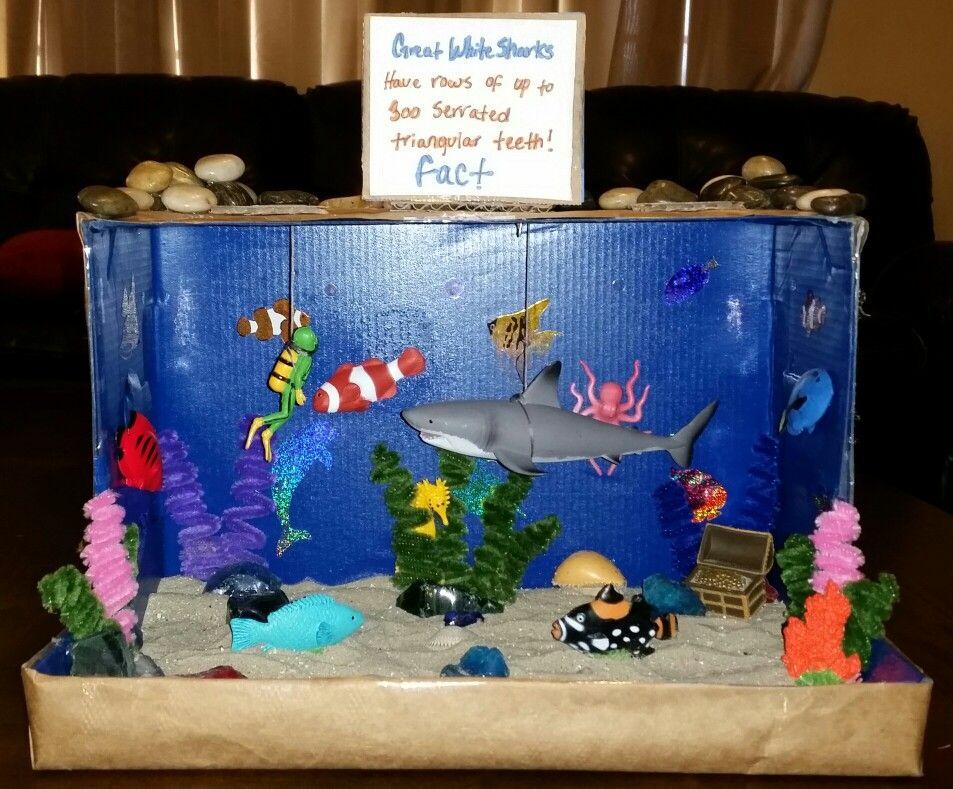 Shark diorama | Diorama kids, Kids art projects, Ecosystems projects