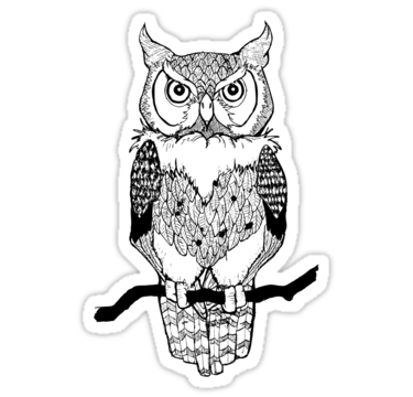 Owl design owl illustration owl drawing by brokenpencil