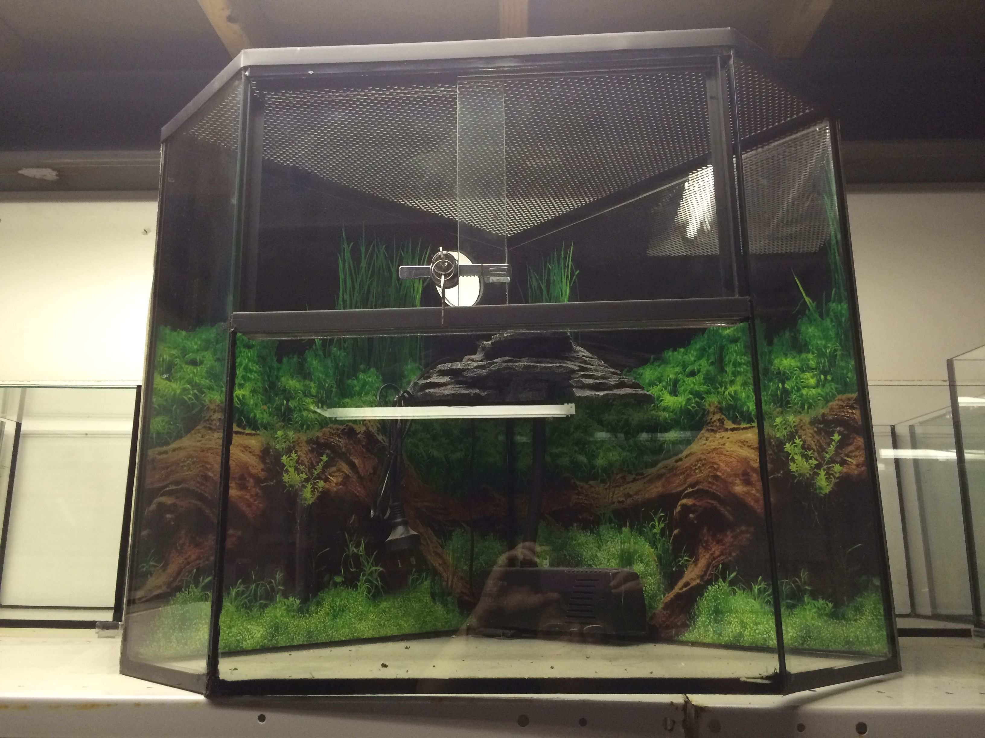 Need a new enclosure for you pet dragon snake turtle etc we