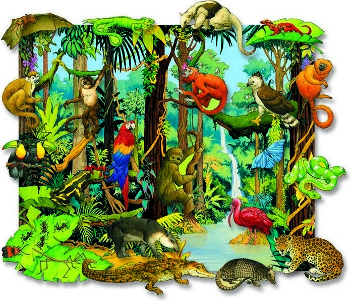 Rainforest Background Tattoos Sydamerika, Djur, Animales
