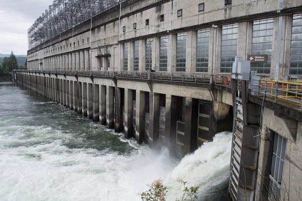 New Judge To Hear Arguments On Columbia River Dams And Salmon
