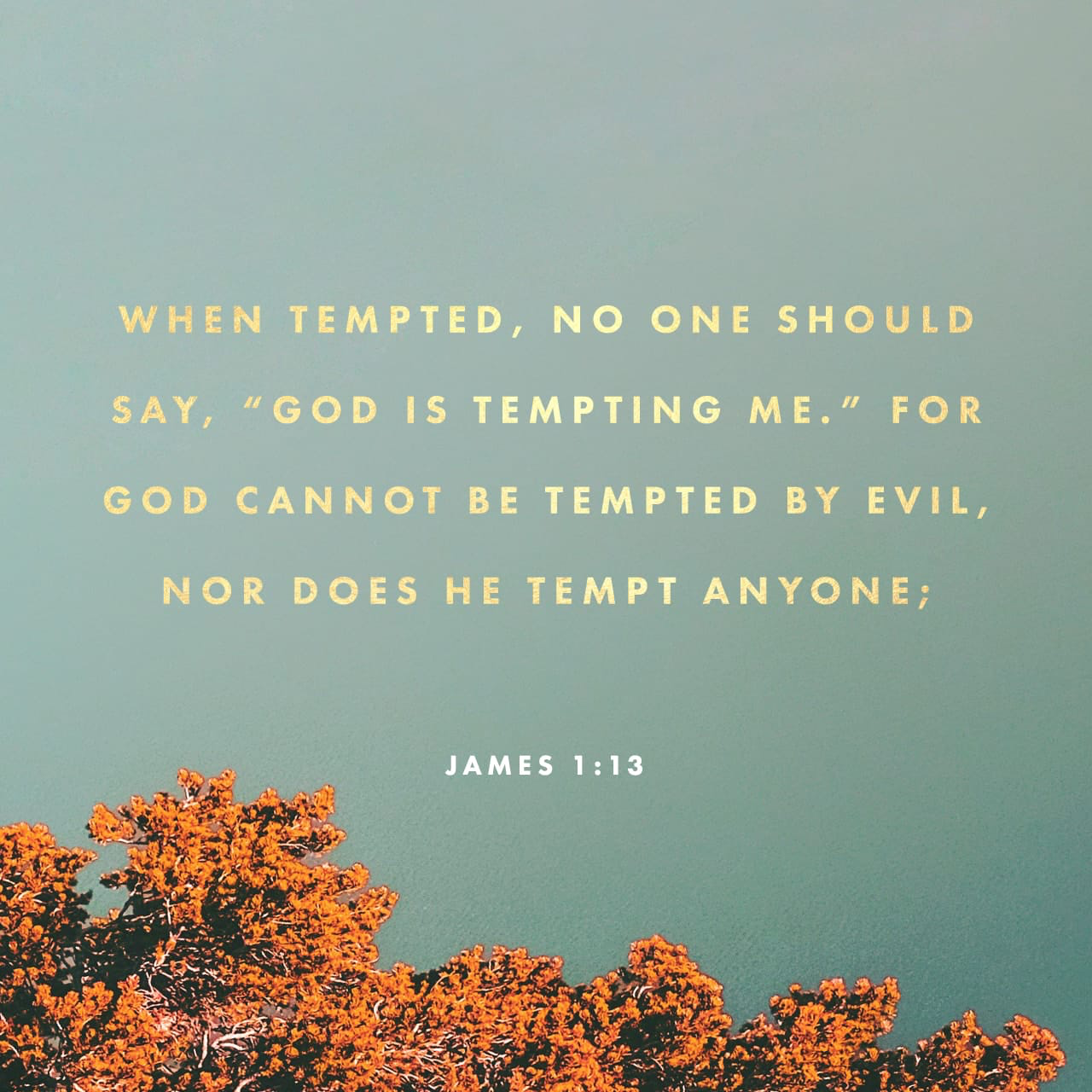 """Let no man say when he is tempted, I am tempted of God"