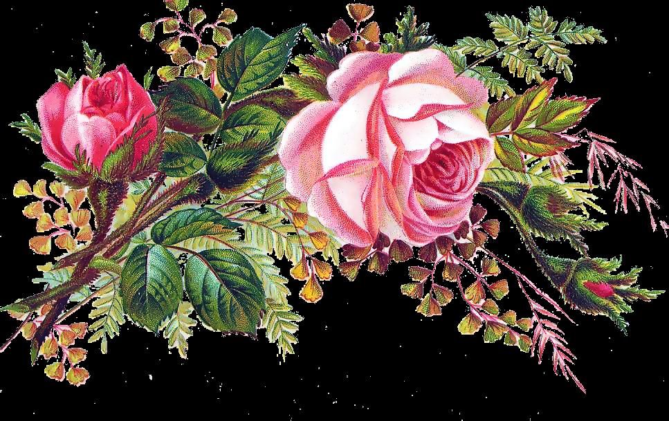 Цветы рисунок на открытку