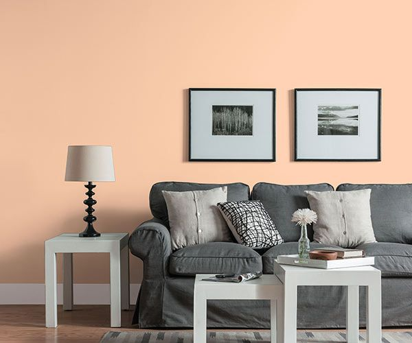 Color Of The Month July 2015 Bellini Peach Walls