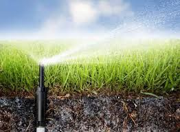 Rainbird Sprinkler System Georgetown Helps To Manage And Control The Sprinkler System Processes This Ia The Best Process Of Testing For Sprinkler Installation Irrigation Sprinkler