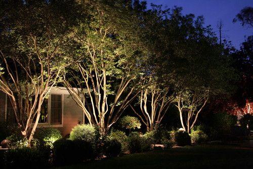 awesome landscape lighting