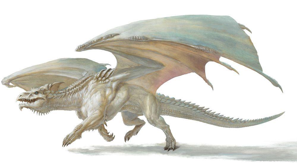 White dragon   Dragons   White dragon, Dragon art, Chromatic dragon