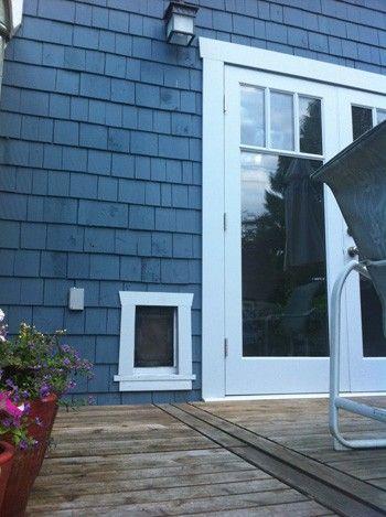Pet Door Reviews Energy Efficient Pet Doors Doggies Doors And Walls