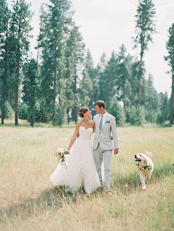 So Naturally Any Wedding That Has A Gorgeous Pup In It Captures My