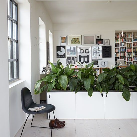 Modern Dining Area With Plant Divider