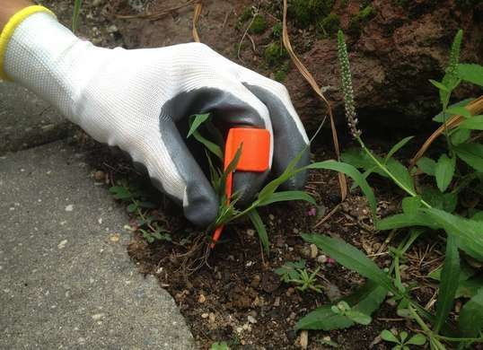 Genius but simple gardening tool for removing weeds. The Ring Weeder