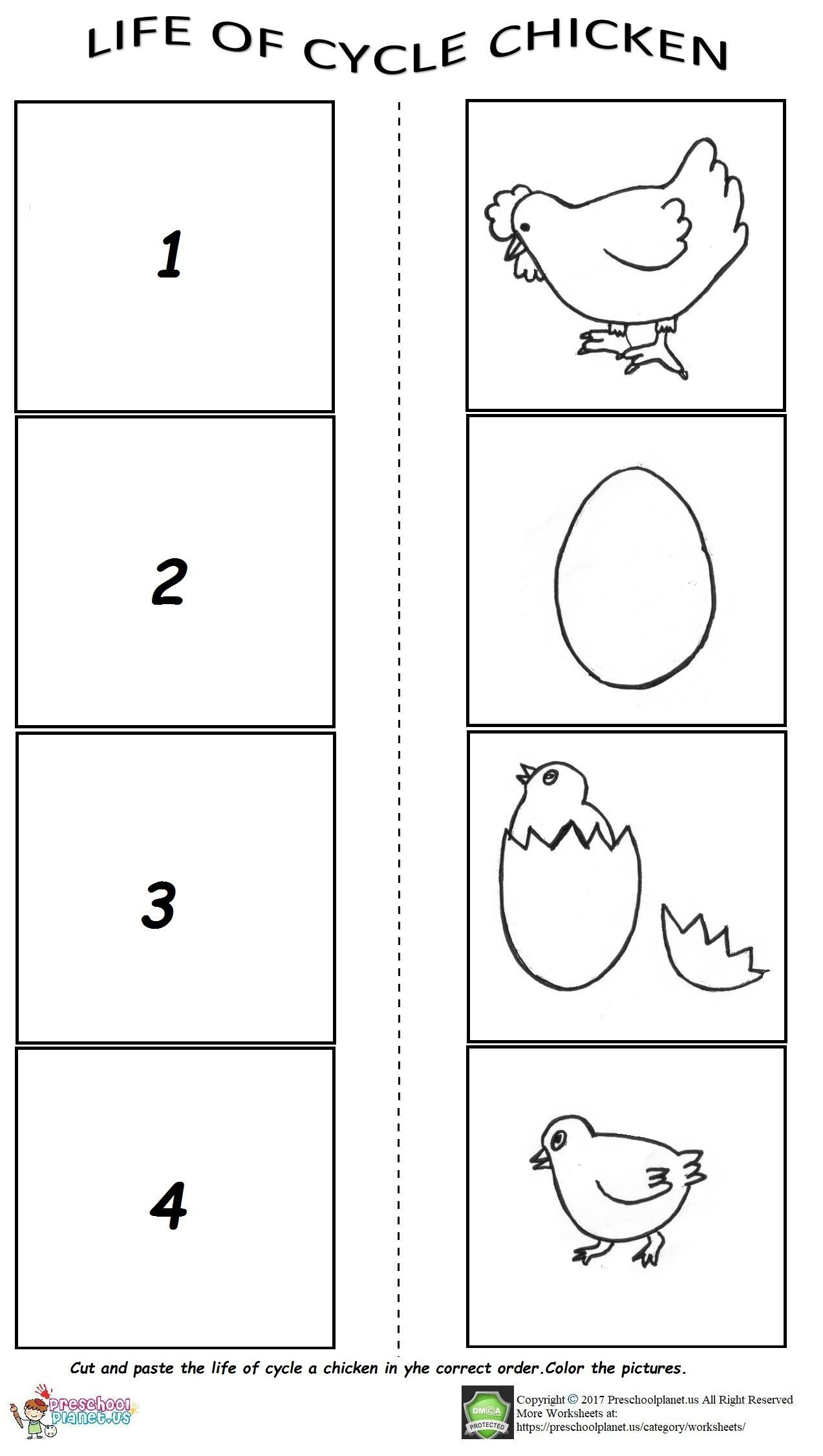 Life Of Cycle Worksheet For Preschool Worksheets Cycli On