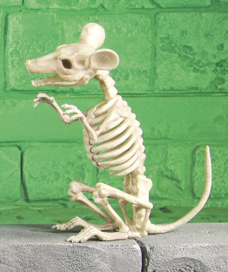 Skeleton Rat Halloween Decoaration Felting Inspiration Pinterest