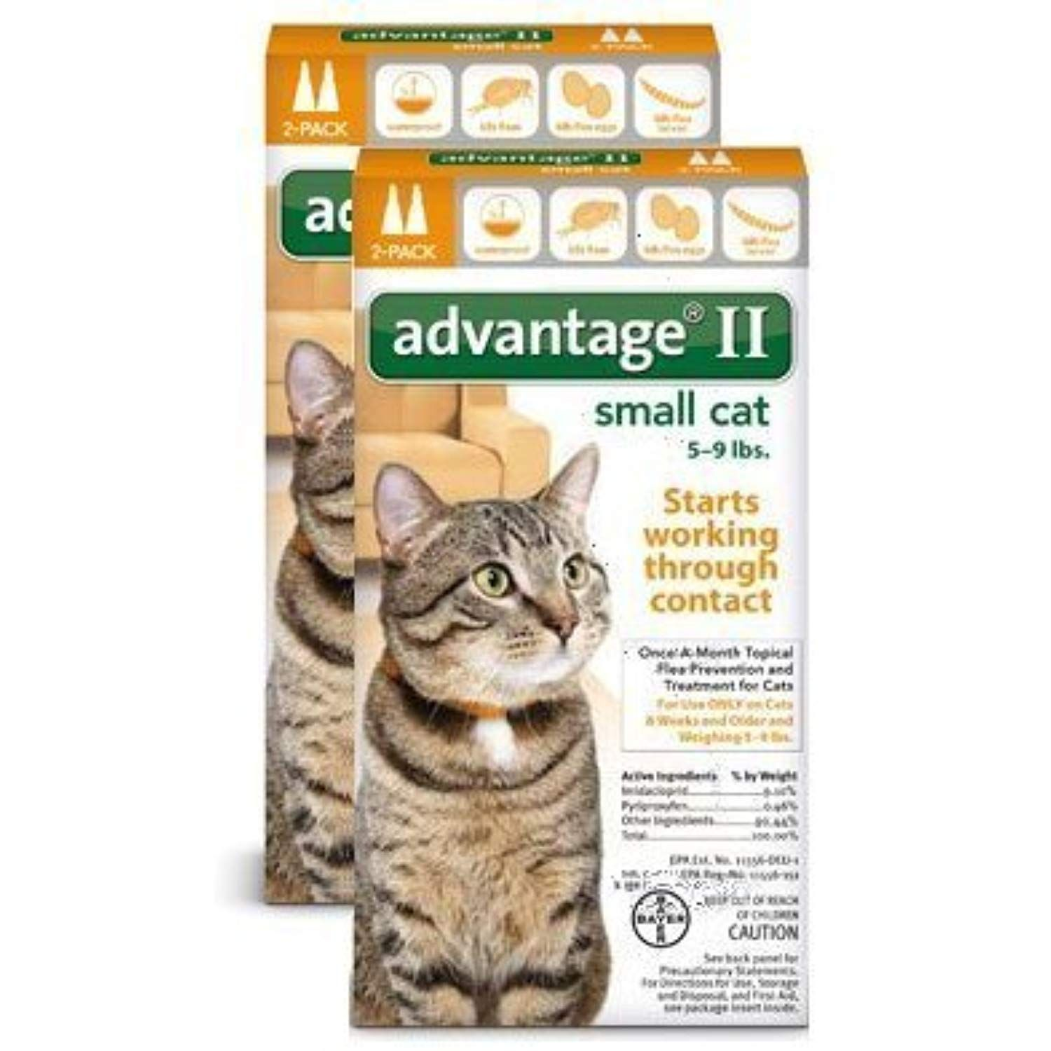 Bayer Advantage 2 Small Cat 2 Pack 5 9 Orange Pack Of 2 Click On The Image For Additional Details This Is A Small Cat Flea Medicine For Cats Cat Fleas