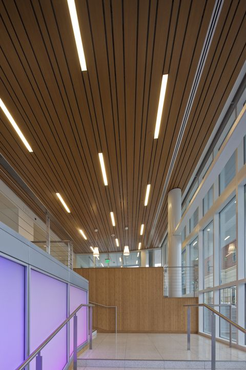 Metal Ceilings Woodwright Multi Box Series Ceiling System From Hunter Douglas Contract