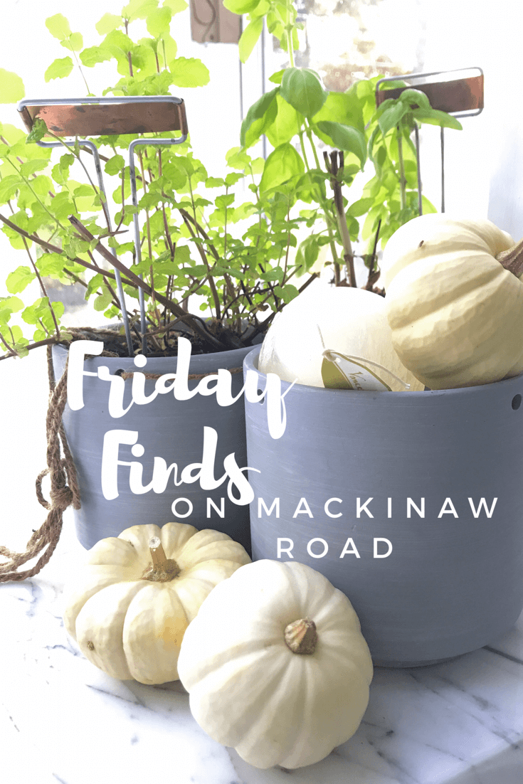 Friday Finds on Mackinaw Road, Take 6: A Travel App, Slippers, Soup, and a Car Game