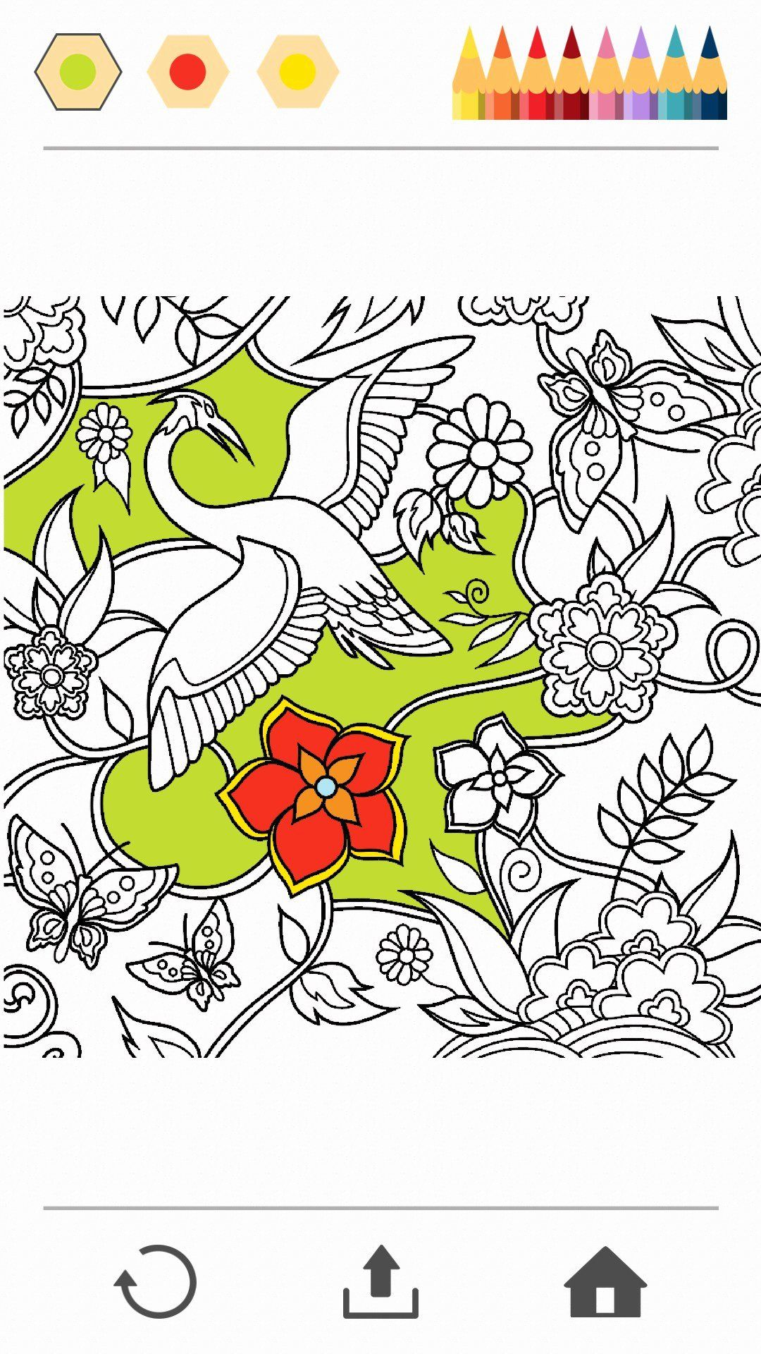 Colorfy Coloring Book Free : colorfy, coloring, Colorfy, Coloring, Unique, Programy, Android, Books,, Wedding, Pages,, Pages