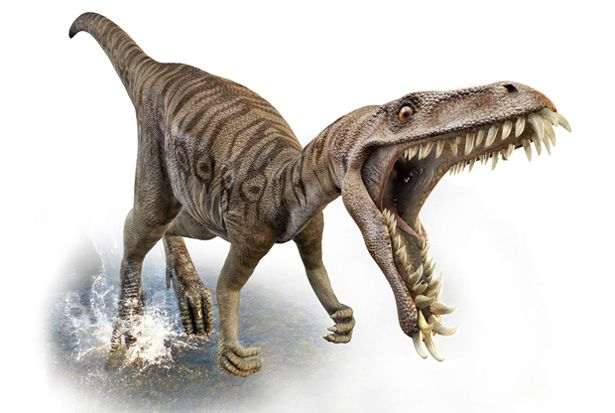 Image detail for -Dinosaurs pictures  Funny Animal
