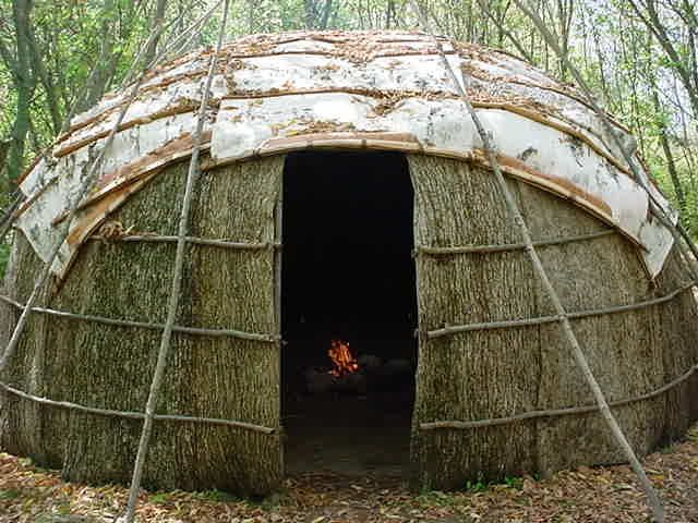 This is a nice wigwam | Native Shit | Pinterest | Birches, Birch ...