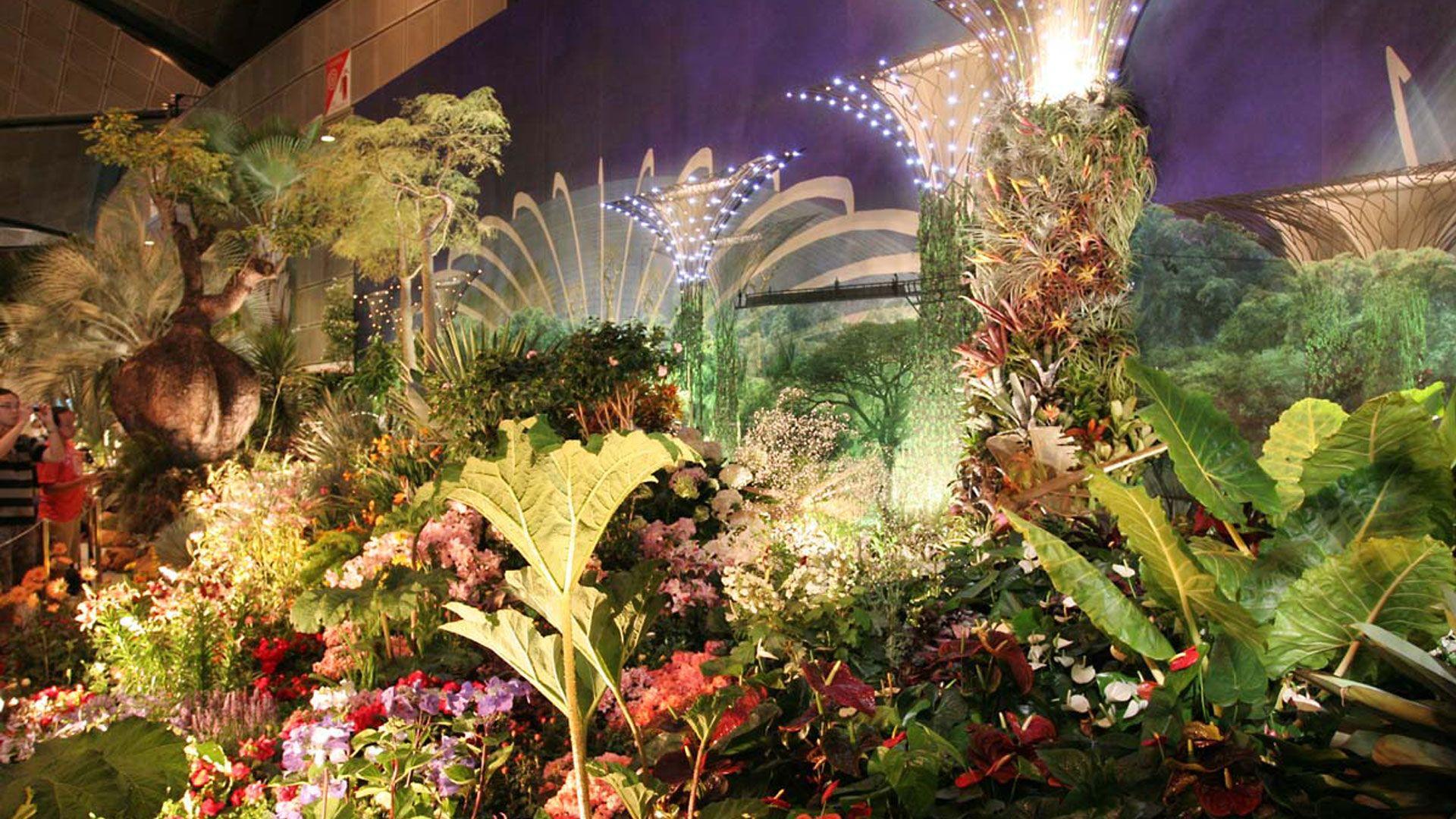 flower-Beautiful-gardens-by-the-bay,-singapore | Wedding Stuff ...
