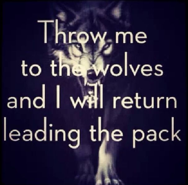 I know this has nothing to do with the Army, but my brother was apart of the 'Wolfpack' in his last fort. This just makes me think of him.