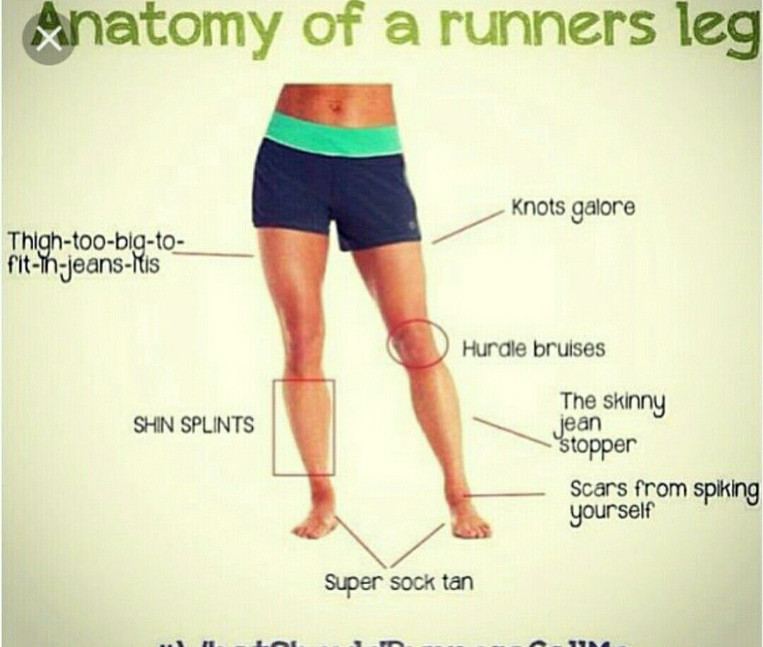 Anatomy of a runners leg | Running quotes | Pinterest | Anatomy ...