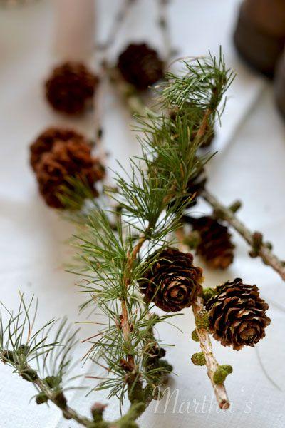 l rchenzweigen zweig herbst winter deko naturmaterial flowers pinterest. Black Bedroom Furniture Sets. Home Design Ideas