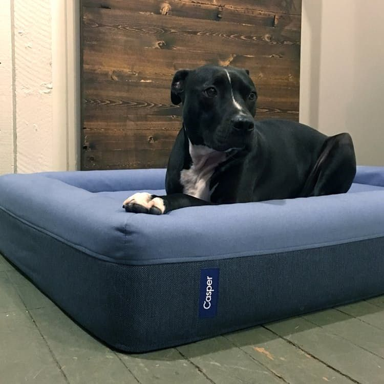 Pin By Tamera Thompson On Pets Dog Bed Durable Dog Bed Dog Treat Toys