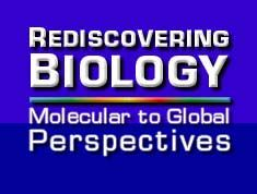 rediscovering biology (high school) text, case studies, animations