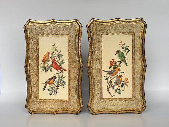 Florentine Wall Plaques - Vintage Bird Prints Art Decor Bird Wall