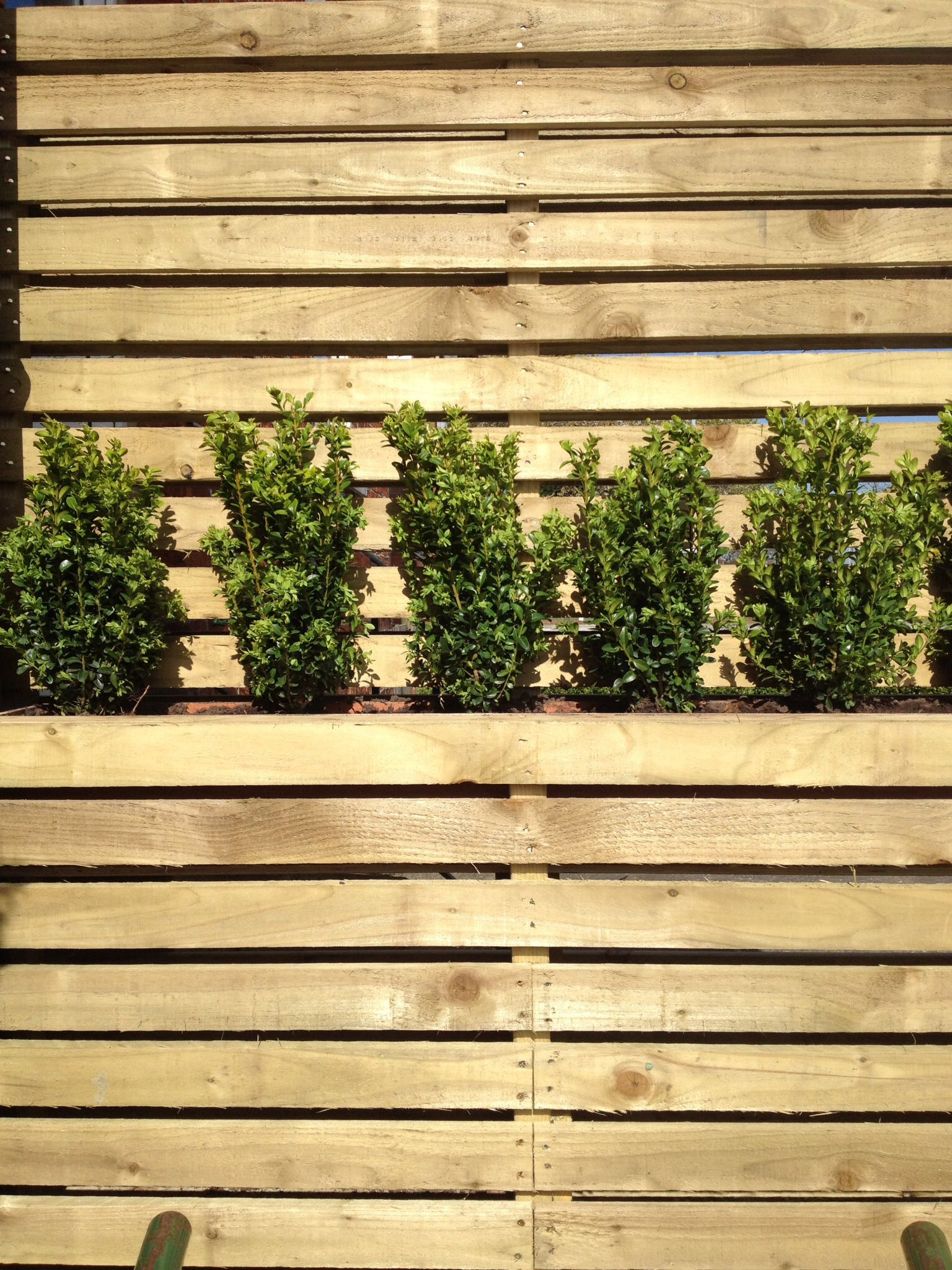 3x1 treated timber contemporary design fencing. Incorporated planter ...