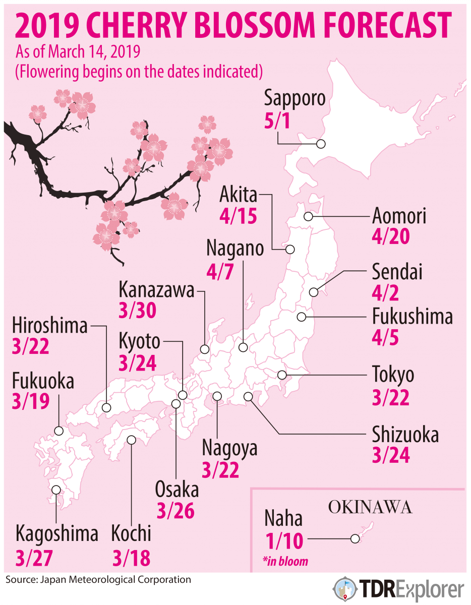 Cherry Blossom Forecast 2019 In Japan Japan Travel Guide Jw Web Magazine Japan Cherry Blossom Japan Japan Travel