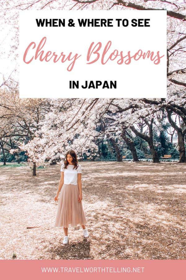 Sakura Season Where To See Cherry Blossoms In Japan Travel Worth Telling Cherry Blossom Japan Japan Travel Japan