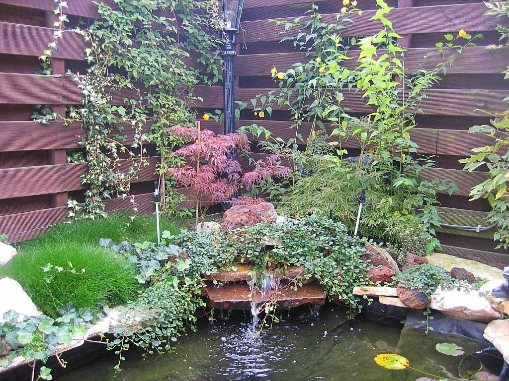 Kleine vijver leuke tuin met ronde vormen en muurtjes en for Een vijver