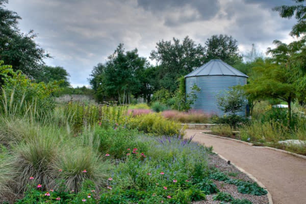 How To Design Native Landscapes Ornamental Grass Landscape Landscape Design Texas Landscaping